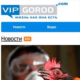 vipgorod.com